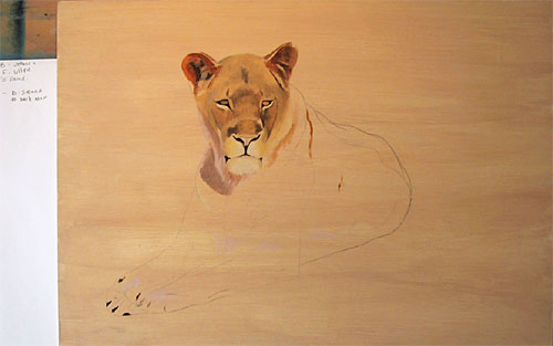 Львица. Поэтапная демонстрация от Jason Morgan